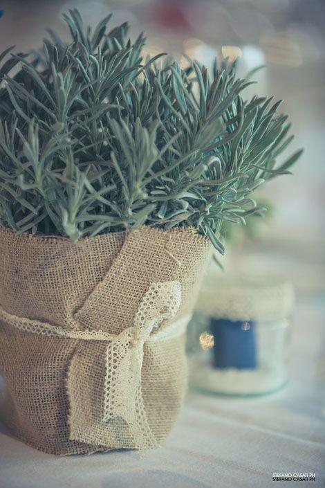 whitejasmine_fiori_decorazioni_lavanda