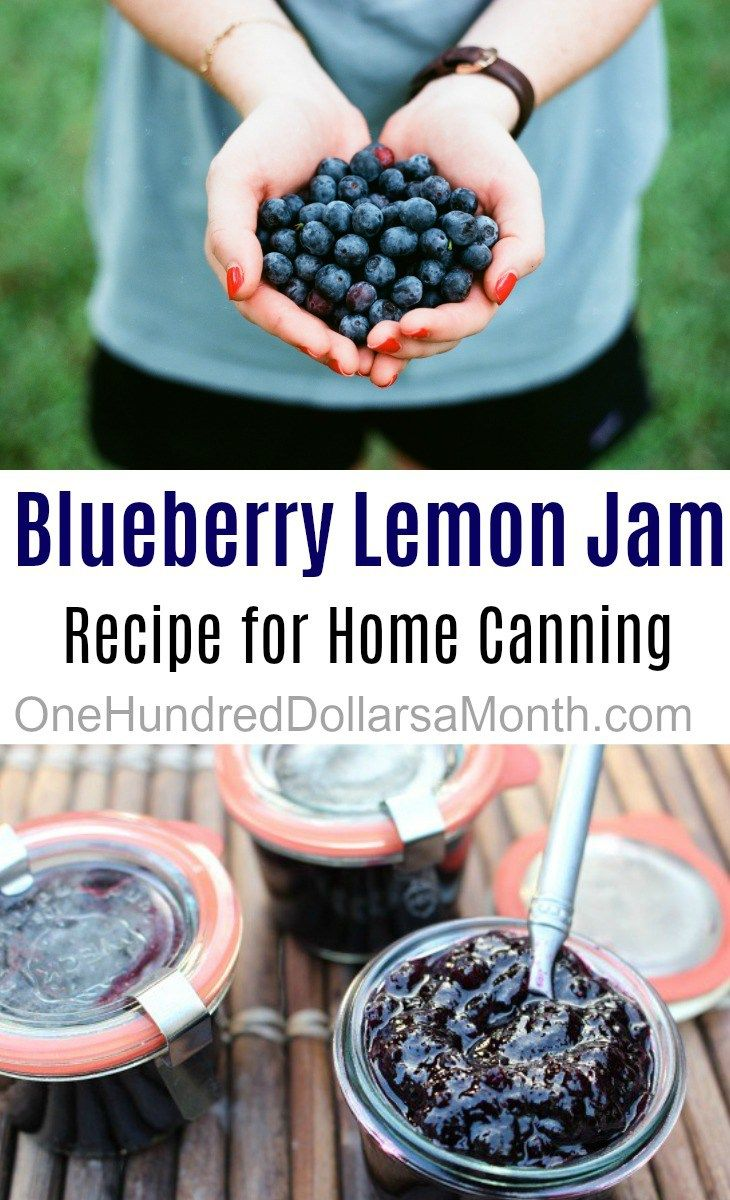 Blueberry Lemon Jam, Blueberry Jam Recipe, Canning Recipes, Canning, Recipes with Blueberries