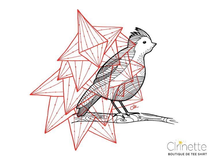 Maître oiseau sur sa branche