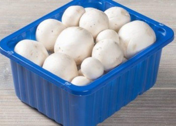 Dus zo gebruik je de deksel van een bakje champignons. Dit deed ik mijn hele leven al verkeerd!