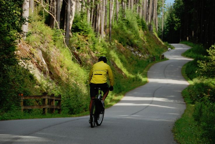 Seymour Valley Trailway | North Vancouver