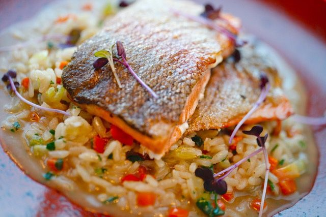 Salmon trout fillet on cream risotto, with carrot, celery and parsley