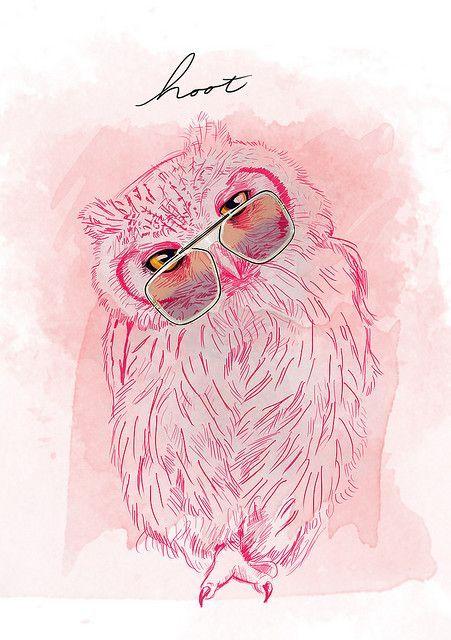 Owls, совы