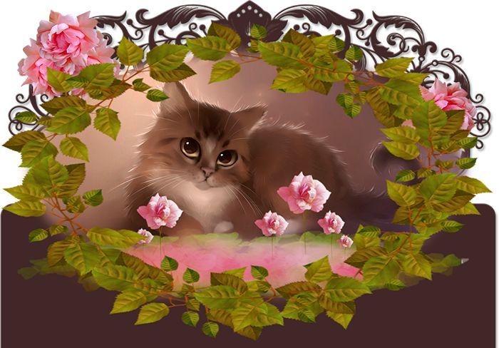 5 citations sur les chats - Frawsy