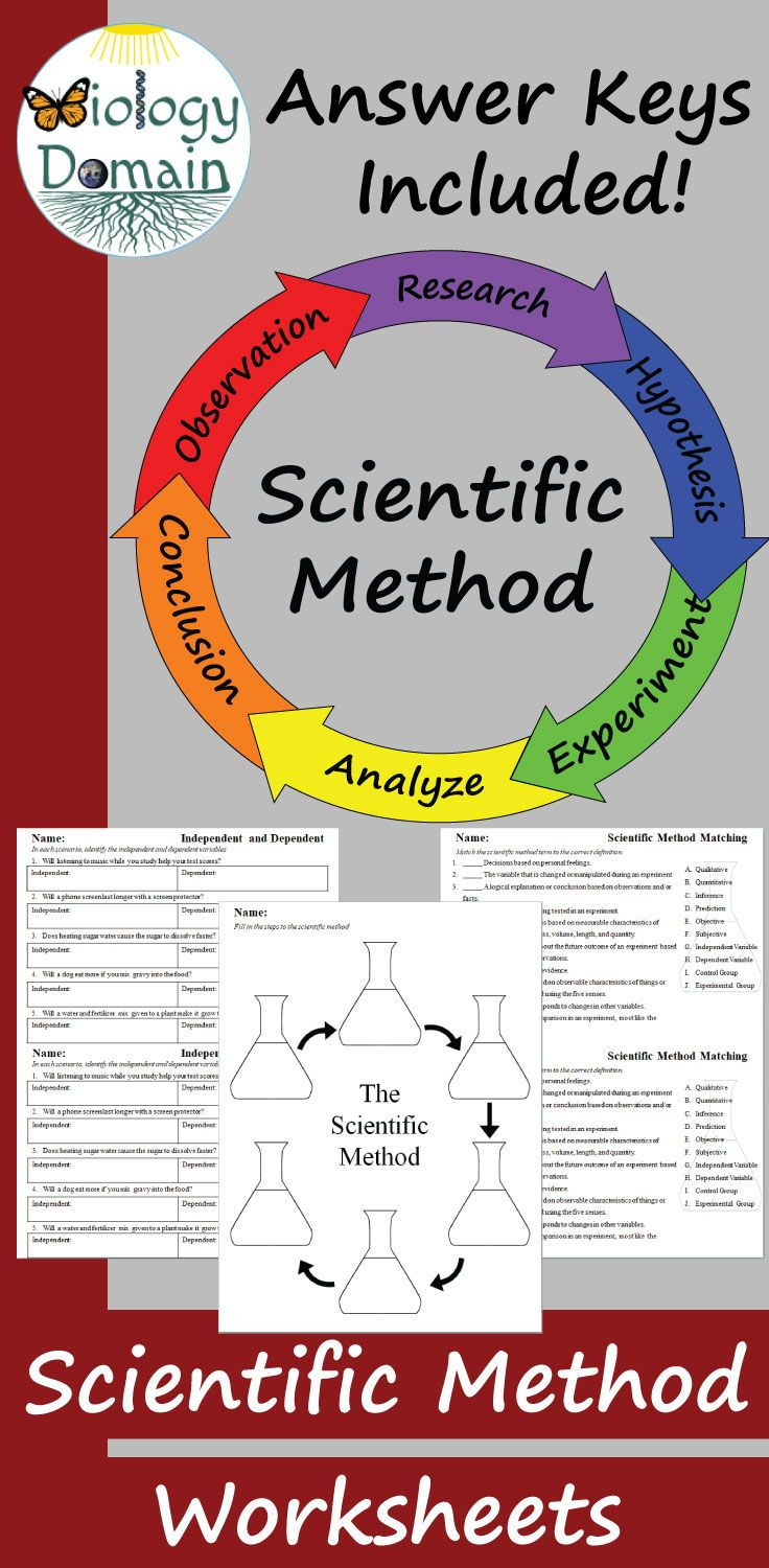 Worksheets Include Scientific Method Matching Designing An Experiment Identifying A Hypothesis Iden Scientific Method Worksheet Scientific Method Scientific