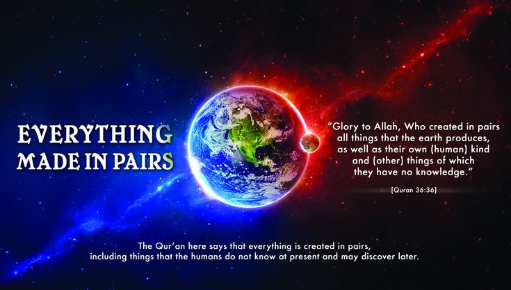 DesertRose///Picture Perfect : Quran & Modern Science – Allah created everything in pairs