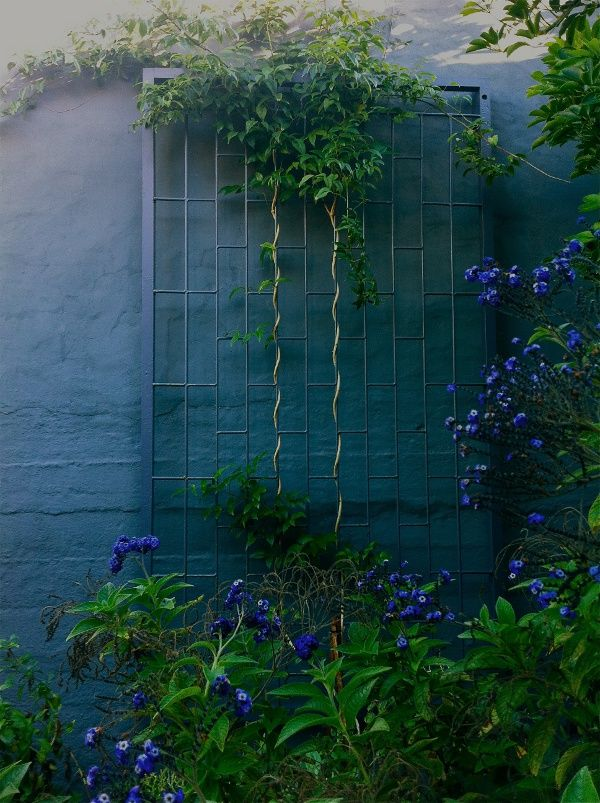 Blue Ombre Painted Garden Wall Colorful Patio Exterior Murals