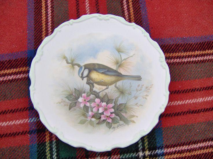 Royal Albert The Woodland Birds Collection Plate, Blue Tit. Royal Albert Blue Tit. I Post Overseas By Arrangement. by ArtysBazaar on Etsy