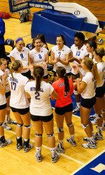 """Mother Seton's Strong Daughters (haiku) """"Props on first ever - volleyball tournament to - Seton Hall women"""" Volleyball Earns First-Ever NCAA Tournament Berth - Seton Hall Pirates Official Athletic Site"""