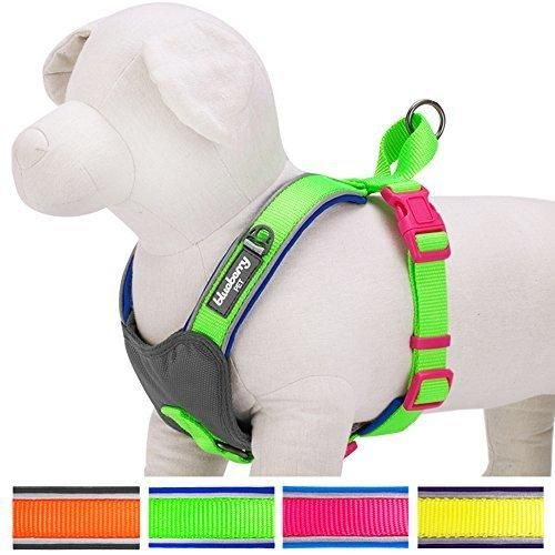 """Blueberry Pet 4 Colors Soft & Comfy Summer Hope 3M Reflective Padded Dog Harness Vest Chest Girth 18.5"""" - 20.8"""" Neck 17.5"""" Fluorescent Green"""