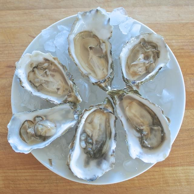 Learn the differences between oysters with this guide to oysters.