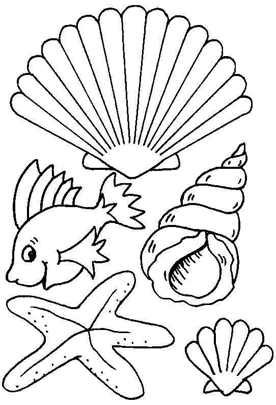Üvegmatrica minták, színezők, kifestők, sablonok, üvegfestés, állatok, kagylók, halak, vízi állatok, delfinek, cápák