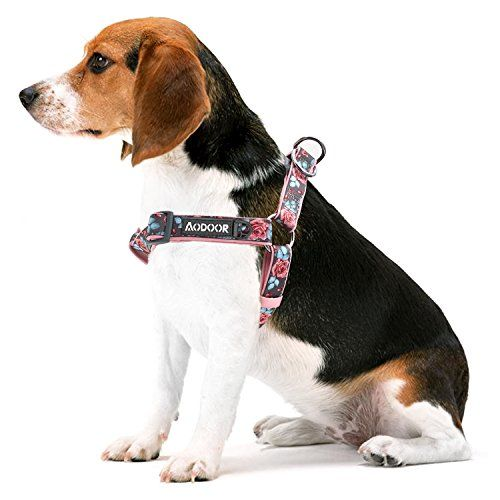 Aodoor Ultra-Soft Hundegeschirr Softgeschirr Brustgeschirr Hunde Geschirr Sicherheitsgeschirr G�nsebl�mchen Pfingstrosen und Rosen S 40-50cm 1,5cm