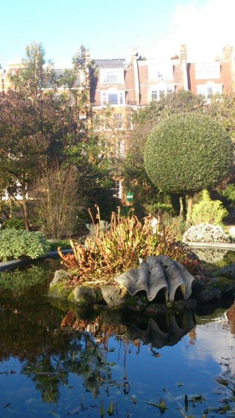 Is it weird to pin your own blog?  It probably is, right?  Well whatever.  I'm doing it.  It's new.  So, read it if you wish?    This, by the way, is a photo of the Chelsea Physic Garden, which is all around lovely.