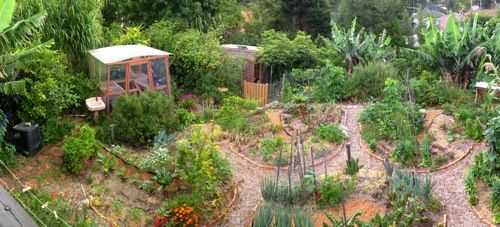 Happy Earth, an incredible suburban food forest. Love this- you don't need a lot of space to grow a LOT of good food!