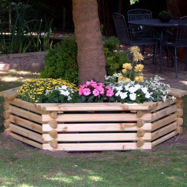 Las 25 mejores ideas sobre decoraci n de jard n frontal for Jardin que planter en janvier