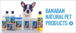 Banaban pet care range contain all natural products for promoting healthy skin and glossy coat for your pet. It also assists in overcoming allergies associated with fleas. Virgin Coconut Oil helps increase the 'friendly bacteria' on the skin and not destroy the natural pH balance which is necessary to promote healthy skin. Virgin Coconut Oil also penetrates the hair shaft which softens the hair and while conditioning the skin at the same time. - See more at: http://www.naturepacific.com
