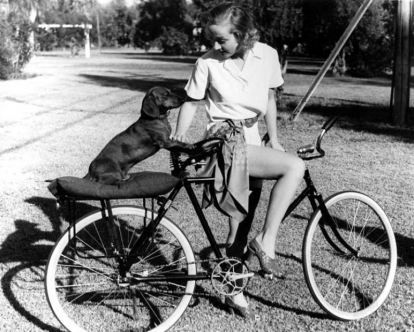 Carole Lombard and her Dachshund Commissioner.  My 12 year old Doxie has always loved to ride on anything. Lawn mower, motorcycle...