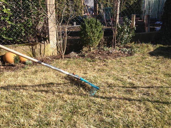 Im Frühling, wenn nicht mehr mit längerem Frost zu rechnen ist, ist Rasenpflege ein wichtiges Thema für jeden Garten-Besitzer. Gerade nach der kalten Jahresszeit braucht Ihre Rasenfläche intensive …