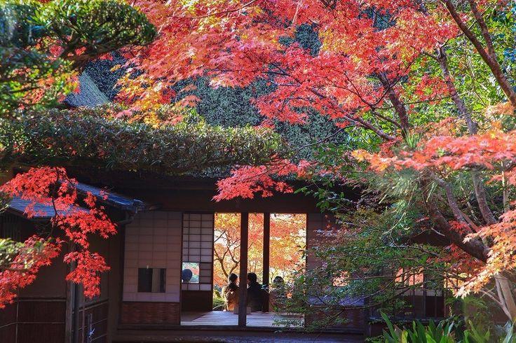 1900年から9年という歳月をかけて作ったということから名づけられた「九年庵」は、佐賀県神埼市にある邸宅と日本庭園のことを言う。元々この地には仁比山護国寺・仁比山地蔵院という寺があったが、佐賀県の実業家の別邸として使われていたが護国寺が神仏分離で廃されてからは地蔵院と土地を交換する。