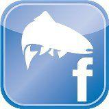 Pescando a Mosca en Facebook