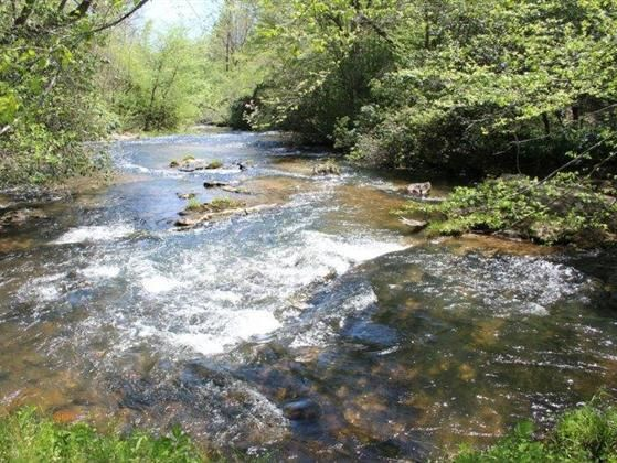 Extra Ordinary mountain farm. Waterfall Frontage on Chickamauga Creek with Pastures in the bottom land. Acres of mountain side timber property. Large Brick house with wood burning Furnace system.