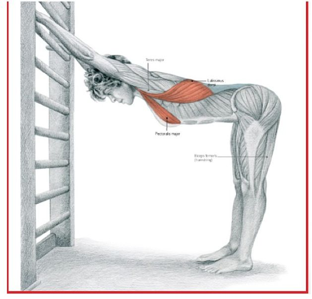 Shoulder and upper back stretch (Taken from fit4dancers on instagram)