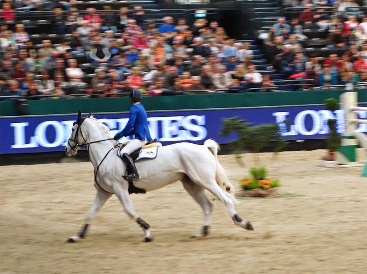 Show Jumping - Partner Pferd Leipzig: http://www.pferd-kultur.de/content/partner-pferd-leipzig-pferdesport-sachsen