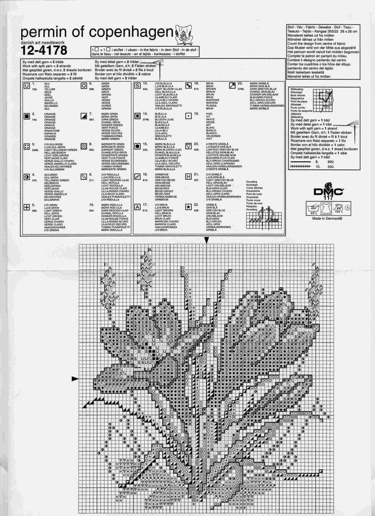 цветы 33
