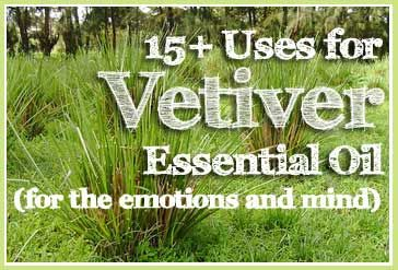 15+ Uses for Vetiver Essential Oil (for the emotions and mind)