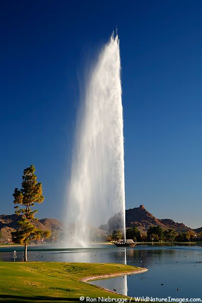 128 best fountain of youth images on pinterest water for Garden fountains phoenix