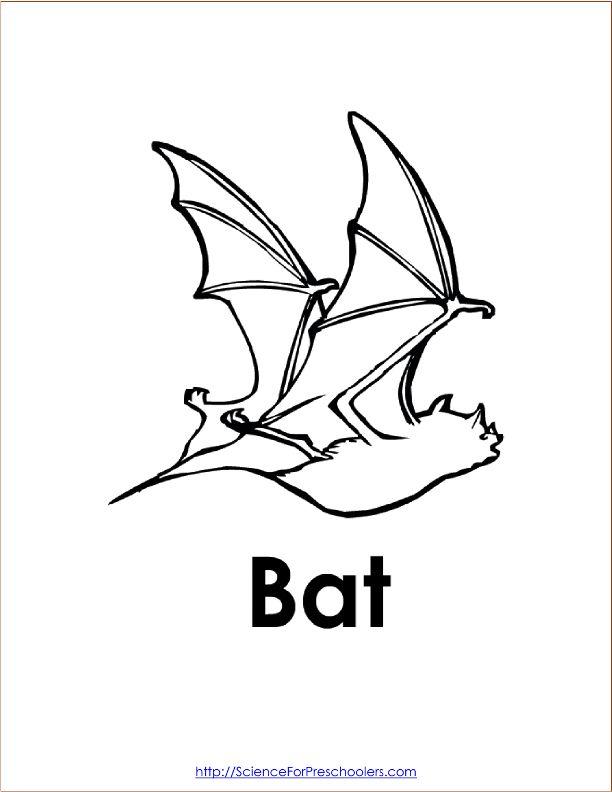bat mitzvah coloring pages - photo#10