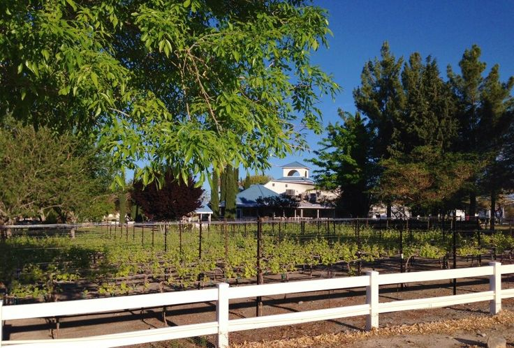 Visit Pahrump Valley Winery Vineyards at Wine Ridge