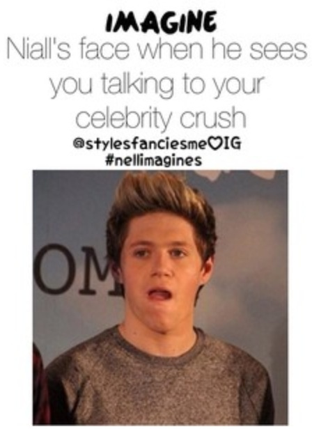 putting-one-direction-preferences-hes-dating-your-celebrity-sister-nakef-guys