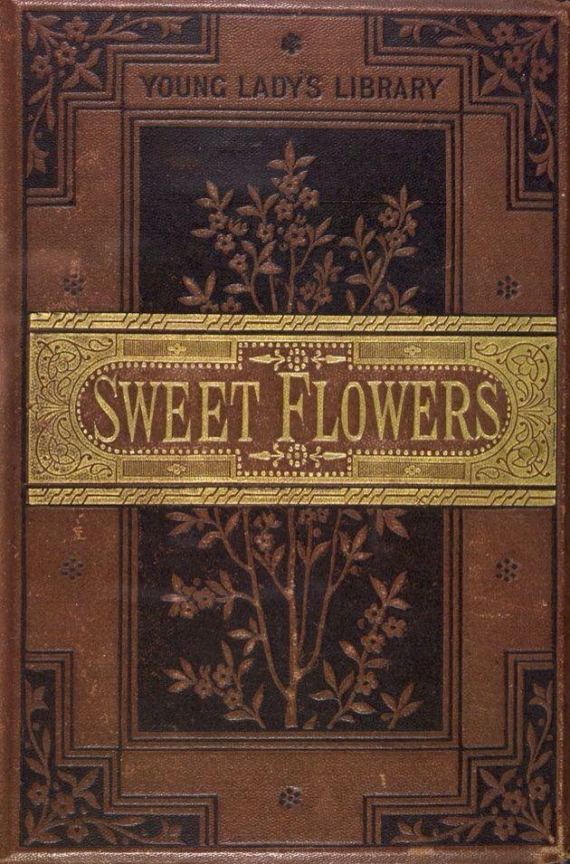 Book Cover Craft Bra : Bästa gamla böcker idéerna på pinterest antika