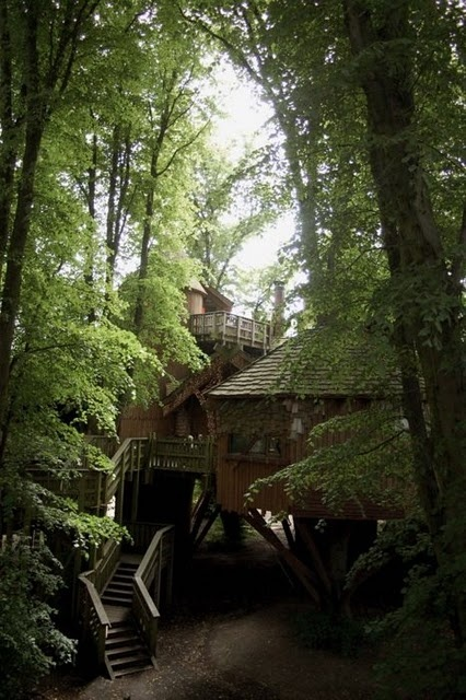 see the-tree house in the woods