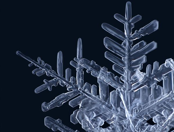 Gorgeous Macro Photographs of Snowflakes by Matthias Lenke (use with The Snowy Day -- Before Five in a Row)