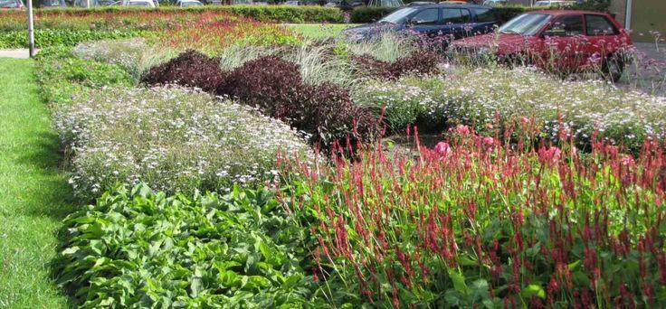 buro mien ruys - tuin & landschapsarchitekten - zorgeloos groen