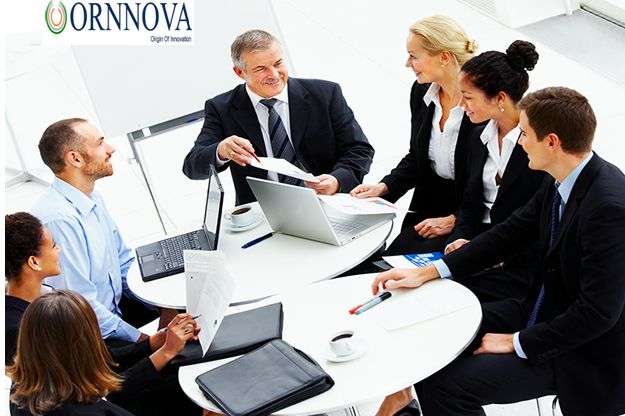IT consultation to accelerate the growth of the highly proactive business needs expert advice. The competition gets higher each year and the possibilities are immense. Contact Ornnova for more details.
