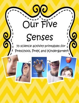 This is a collection of 73 printables to complement your 5 senses theme unit for preschool, PreK and Kindergarten children.
