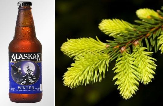 Alaskan Winter Ale; Spruce limb (© Courtesy Alaskan Brewing Co.; Walter Geiersperger/Corbis)