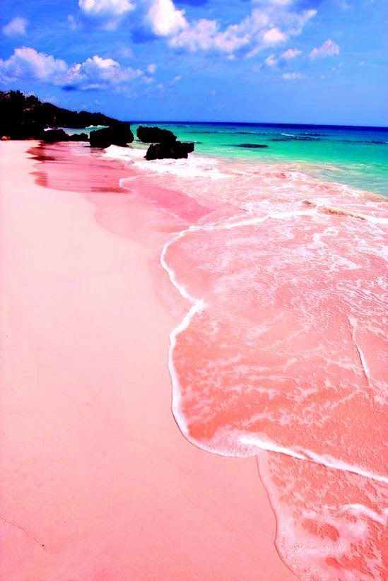 "Pink Sands Beach, Harbour Island, Bahamas. ""Harbour Island is just 3.5 miles long and 1.5 miles wide, but this tiny slice of the Bahamas has one of the Caribbean's prettiest beaches: three miles of pink sand that stretches along the island's east coast. The red shells of foraminifera (single celled marine animals) mix with the island's white sand, thus creating the soft rosy hue."""