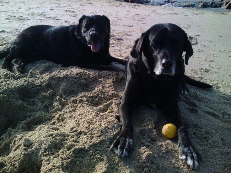 Disfrurando de la playa