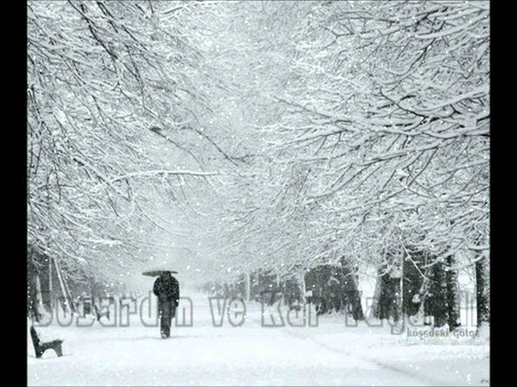Kar taneleri nilüfer nostalji