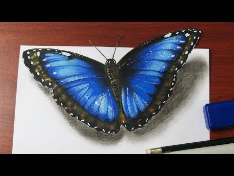 How to Illustrate a Realistic Butterfly That Will Flutter Off of The Paper - YouTube