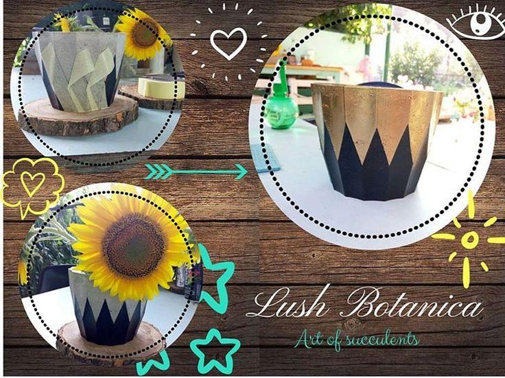 Weekend не прошел даром, захотели и сделали!Горшочек из бетона. В скором времени ожидайте фото с растением.Идея @kornilovajulie ✨#handmade #diy #лайфхак #бетон #pots #ukraine_blog #ukraine_recommends #succulentlove #succulents #lushbotanicaua #сделанослюбовью #сделайсам #dneprcity #dnepropetrovsk #loft #лофт #decor #dneprart #ukraine #vscodnepr #vscoua #днепропетровск #днепр #dneprgram #украина #dnipro