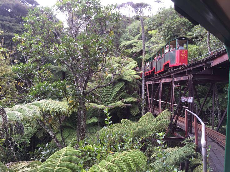 Driving Creek Railway, Coramandel, New Zealand