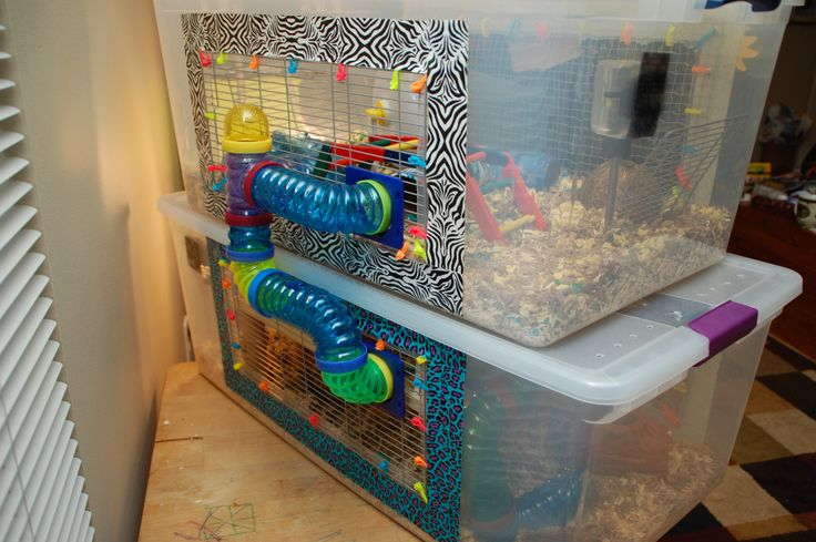DIY hamster mansion: I might make something like this for Zazzles using Hedgie's old cage (a storage container) so he can have lots of room to explore and won't get bored when I'm at work. *Tip: use a large screw bit to drill holes high on the sides and top to allow airflow.