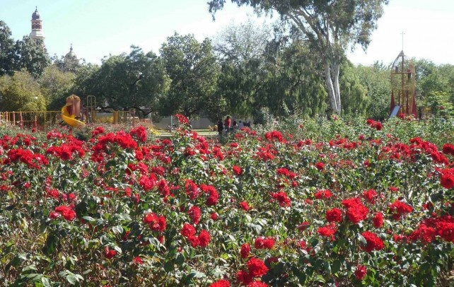 Benalla Botanical Gardens and Rose Gardens