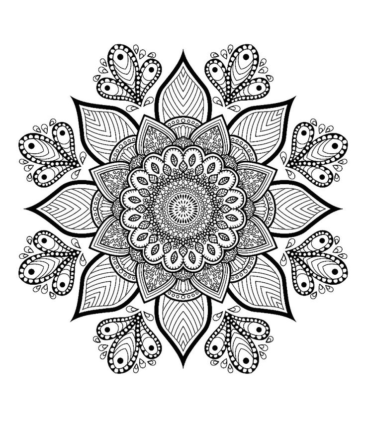 8208 best Color images on Pinterest Coloring books, Coloring pages - best of under the sea coral coloring pages